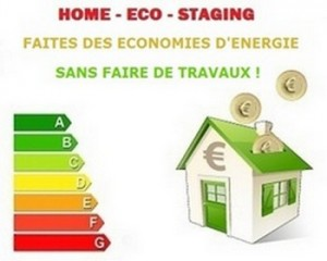 home eco staging le magazine d 39 informations de l 39 actualit du net. Black Bedroom Furniture Sets. Home Design Ideas